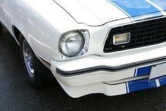 Mustang Lizenzfreie Stockfotografie