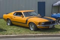 Mustang 1970 Royaltyfri Bild