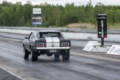 Mustang auf der Bahn Stockfotos