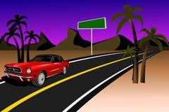 Mustang auf einer Wüste Stockfotografie