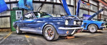Mustang bleu Photos libres de droits