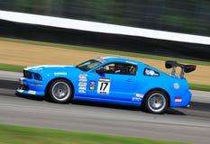 Mustang Boss Royalty Free Stock Photos