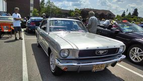 Mustang Car Show Royalty Free Stock Images
