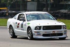 Mustang Challenge Race Stock Image