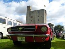 Mustang clássico americano do carro Fotos de Stock Royalty Free