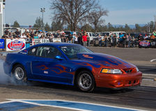 Mustang Cobra at the Drags Stock Photography