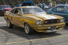Mustang cobra Royalty Free Stock Image