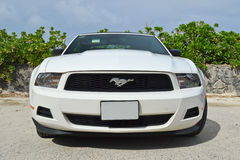 Mustang Convertible Front View. A photograph of a Ford Mustang taken in Hawaii Royalty Free Stock Photos