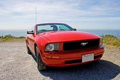 Mustang de Ford Foto de Stock Royalty Free