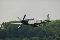 Mustang de P51D Images libres de droits