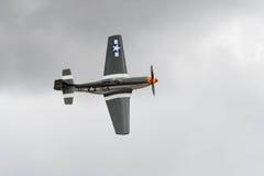 Mustang de P-51D sur l'affichage photo libre de droits