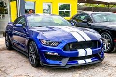Mustang de Shelby fotografia de stock royalty free