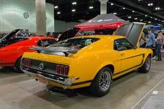 Mustang del capo 302 Fotografia Stock