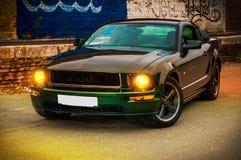 Mustang GT Bullit di Ford Fotografie Stock Libere da Diritti