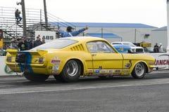 Mustang do vintage na trilha fotos de stock royalty free