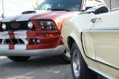 Mustang-Erzeugungen Lizenzfreies Stockbild