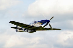 Mustang Excalibur de P-51D Imagem de Stock Royalty Free