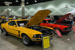 Mustang för framstickande 302 Royaltyfri Fotografi
