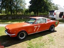 Mustang Fastback Lizenzfreie Stockfotos