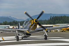 Mustang fighter warbird Stock Photography