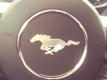 Mustang stock photography