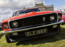 Mustang front Royalty Free Stock Photography