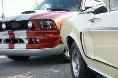 Mustang Generations. Picture of two different mustang generation royalty free stock image