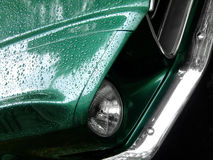 Mustang green on the rain Stock Images