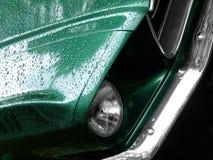 Mustang groen op de regen stock afbeeldingen