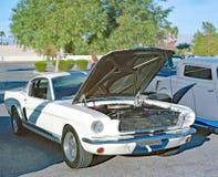 Mustang GT 350 Stockfotos