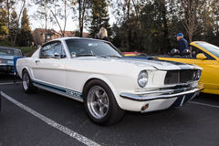 Mustang GT350 Stock Photography