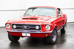 1966 Mustang GT350 Stock Images