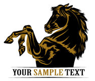 Mustang horse icon. In black and gold Stock Photos