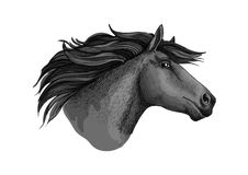Mustang horse or stallion head sketch. Mare horse or mustang head sketch. Broodmare or equine, horsey animal, dapple gray foal or filly or marish with curvy mane Royalty Free Stock Photos
