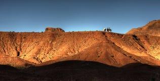 Mustang horses in the desert Stock Image