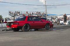 Mustang iść biegowy ślad Obraz Royalty Free