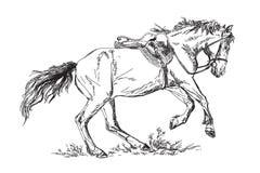 Mustang i vektor Arkivbild