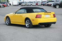 Mustang-Kobra SVT Stockfoto