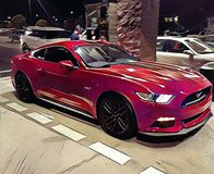 Mustang-Kunst Stockbilder