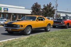 Mustang Mach1 Immagini Stock Libere da Diritti