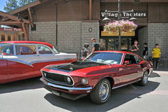 Mustang Mach 1 Stock Images