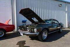 Mustang mais o Car Show 2014 do stockton Ca Imagens de Stock