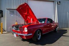 Mustang mais o Car Show 2014 do stockton Ca Imagem de Stock