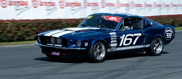 Mustang Muscle Car Racing Royalty Free Stock Photo