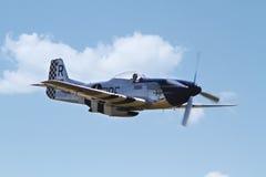 Mustang nord-américain de P-51 D Photos libres de droits