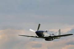 Mustang norte-americano de P-51 D Imagens de Stock Royalty Free