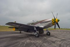 Mustang P-51 Images stock