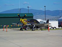 Mustang P51 Images stock