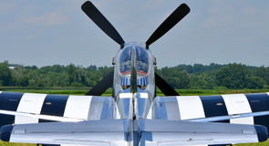 Mustang P-51 Photographie stock