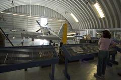 Mustang P-51 Foto de Stock Royalty Free
